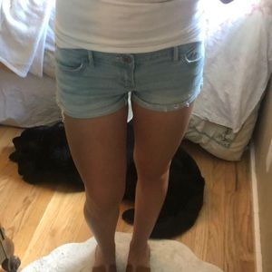 Hollister Co. Size 3 Light Denim Shorts